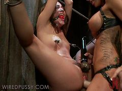 Wild Femdom Action With Hot Babes And Fucking Machines